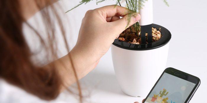 Smart Plant Monitor